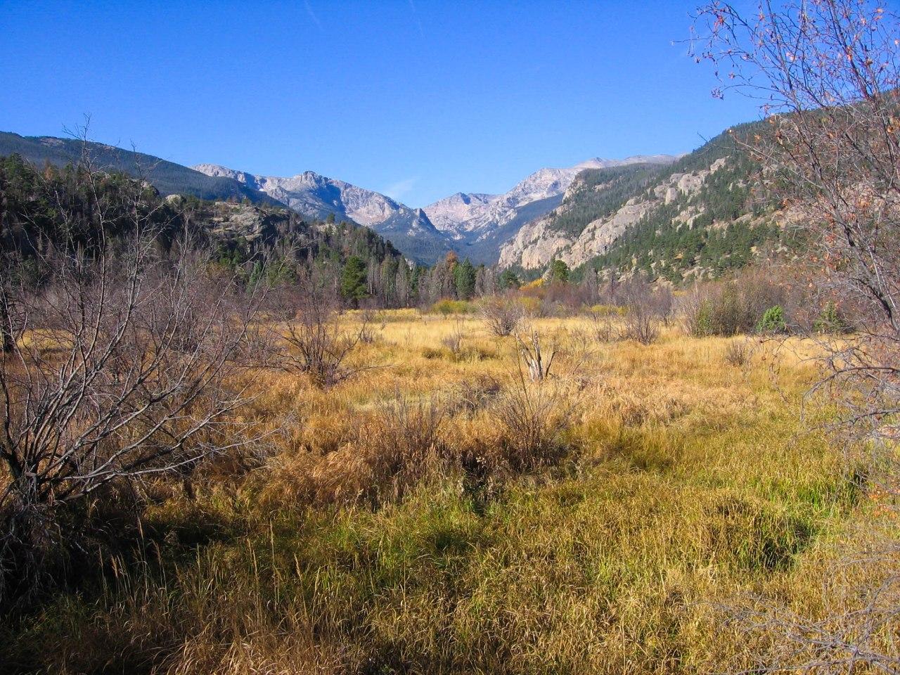 Cub Lake Trail-2818