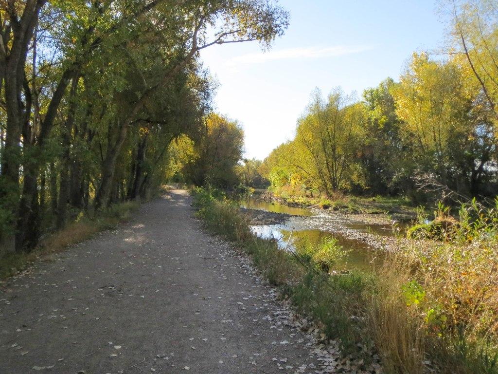 Golden Ponds_-0033