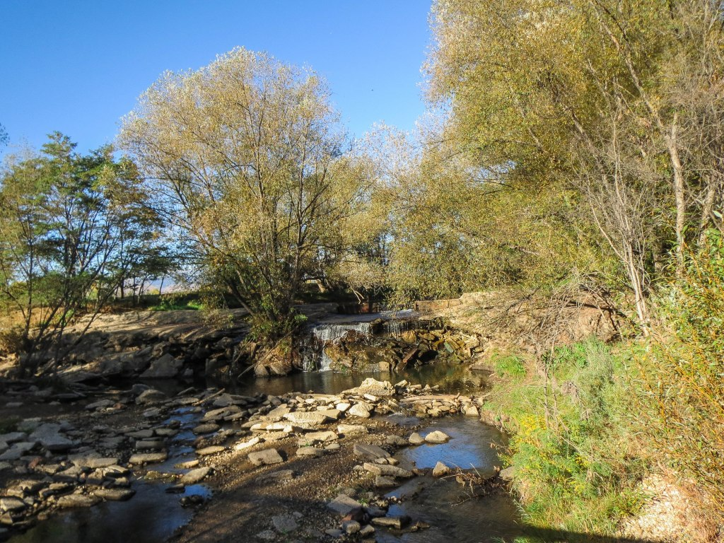 Golden Ponds_-0035