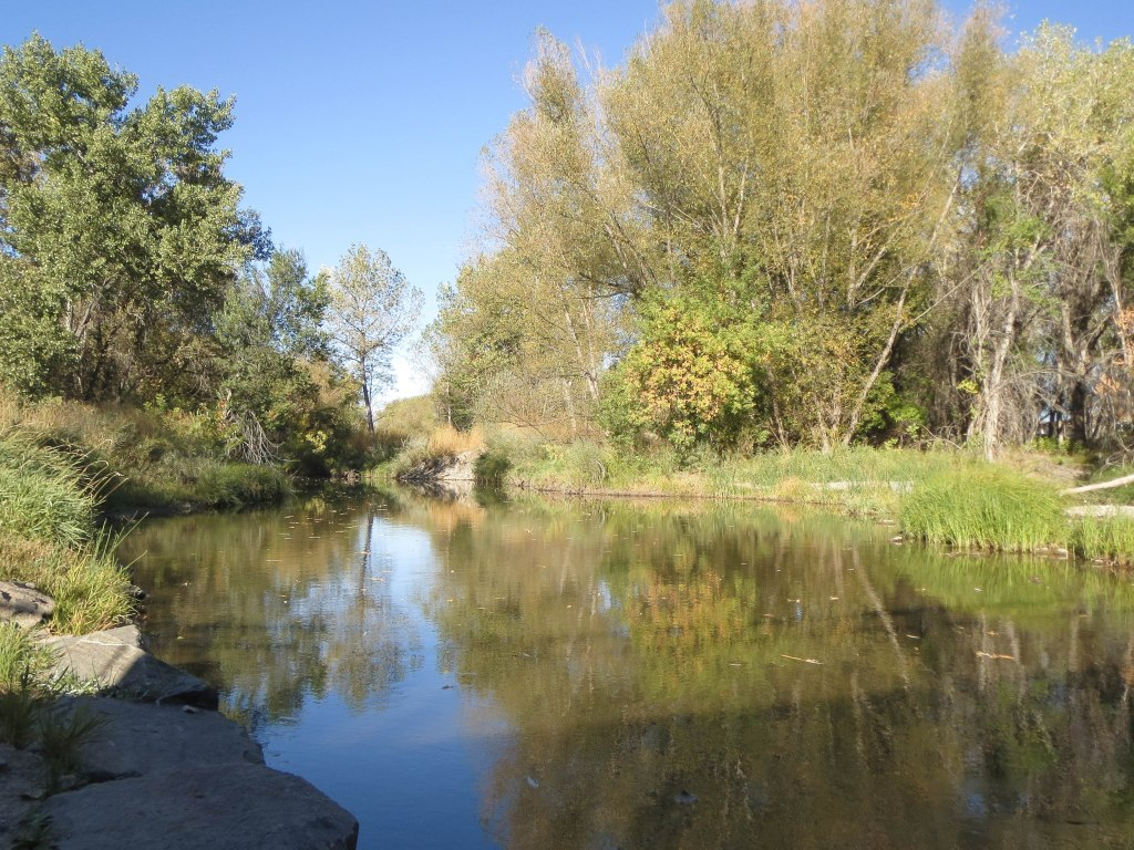 Golden Ponds_-0058