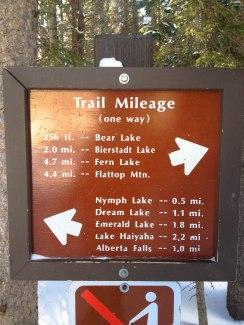 Bear Lake Trail-2426
