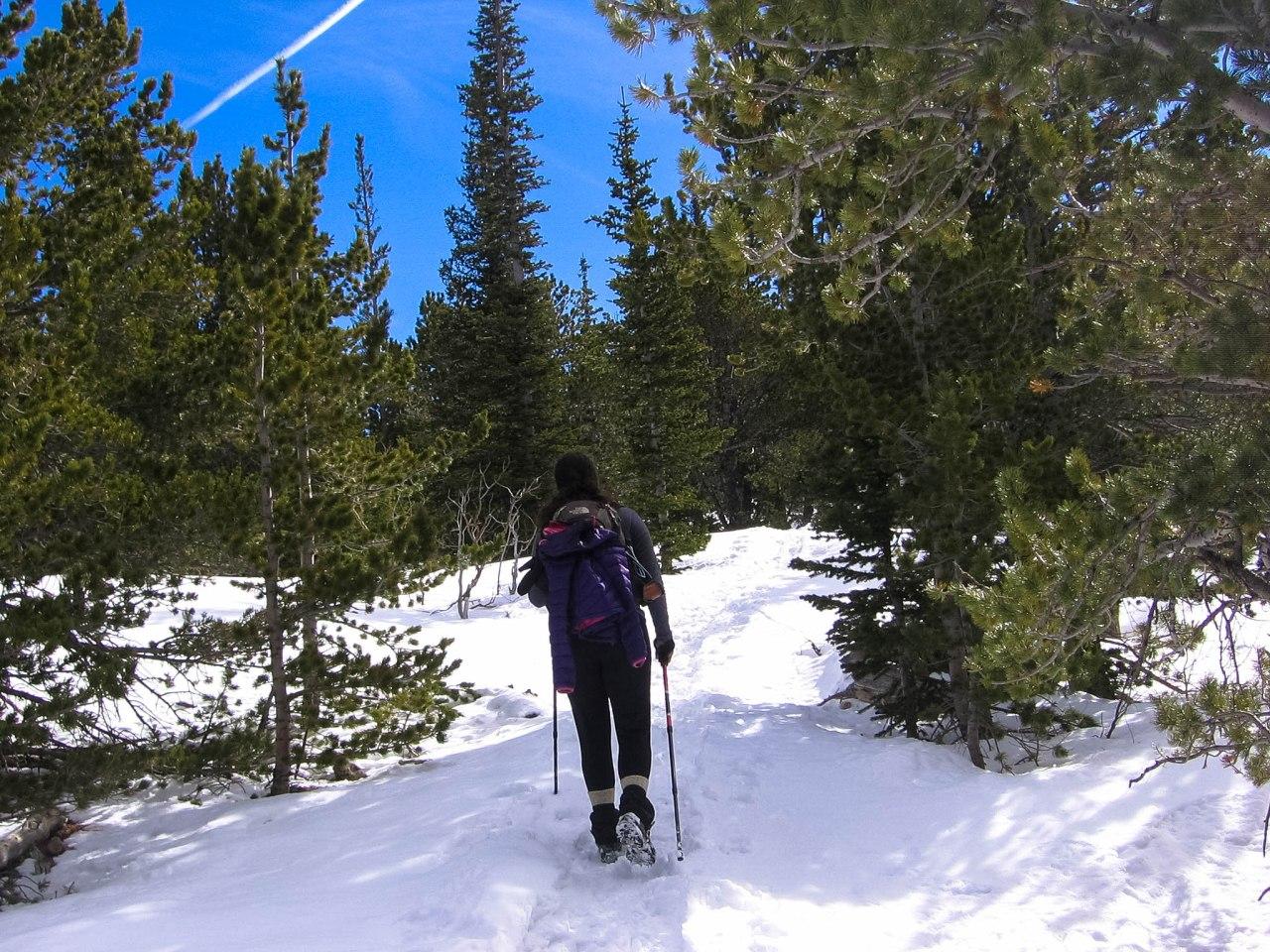 Snowline Chainsen Review 4