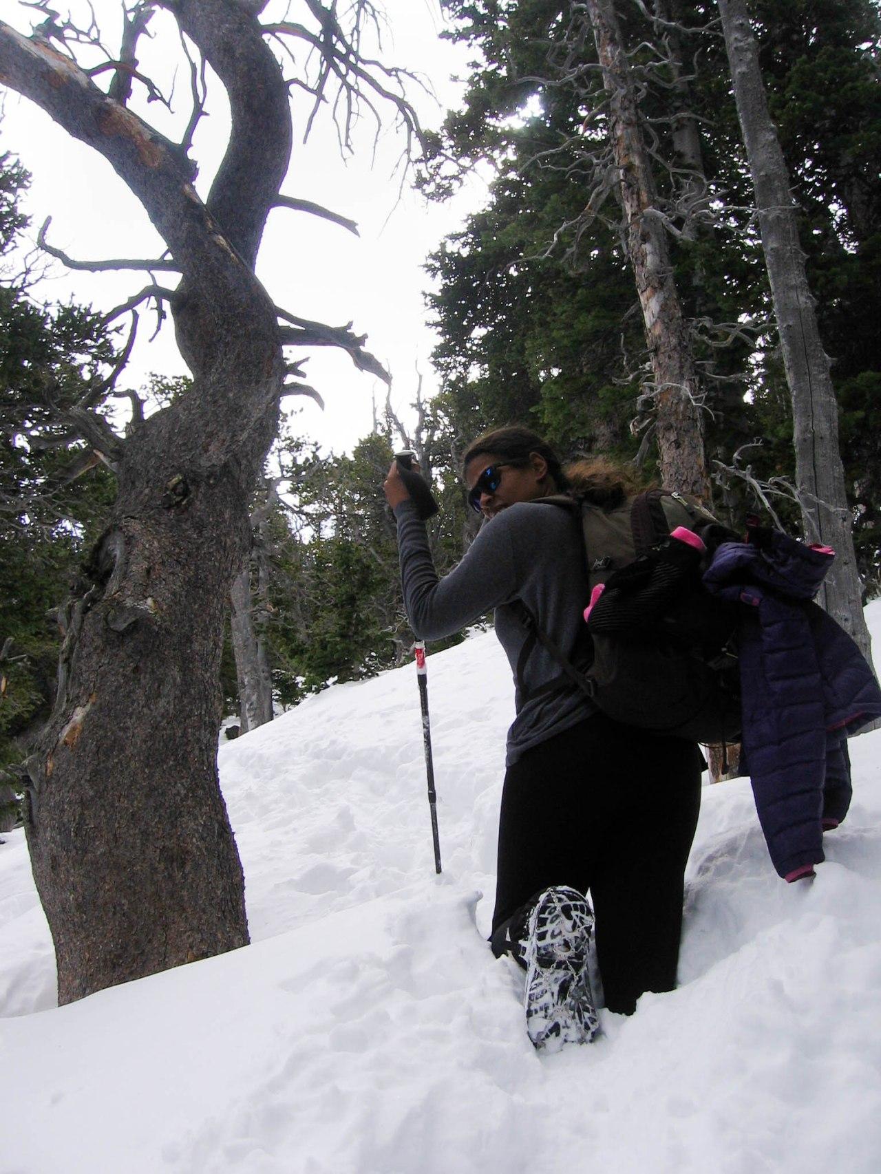 Snowline Chainsen Review 5
